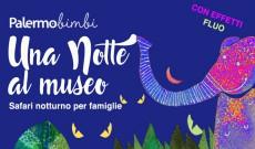 Safari notturno al museo Gemmellaro di Palermo